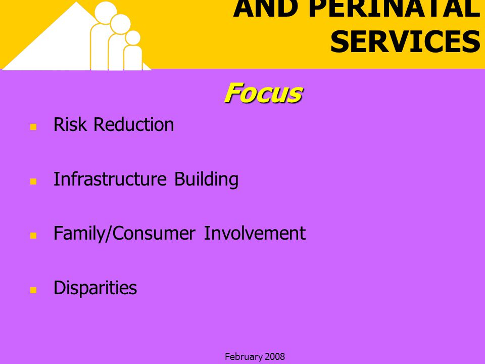 February 2008 HEALTHY START AND PERINATAL SERVICESFocus Risk Reduction Infrastructure Building Family/Consumer Involvement Disparities