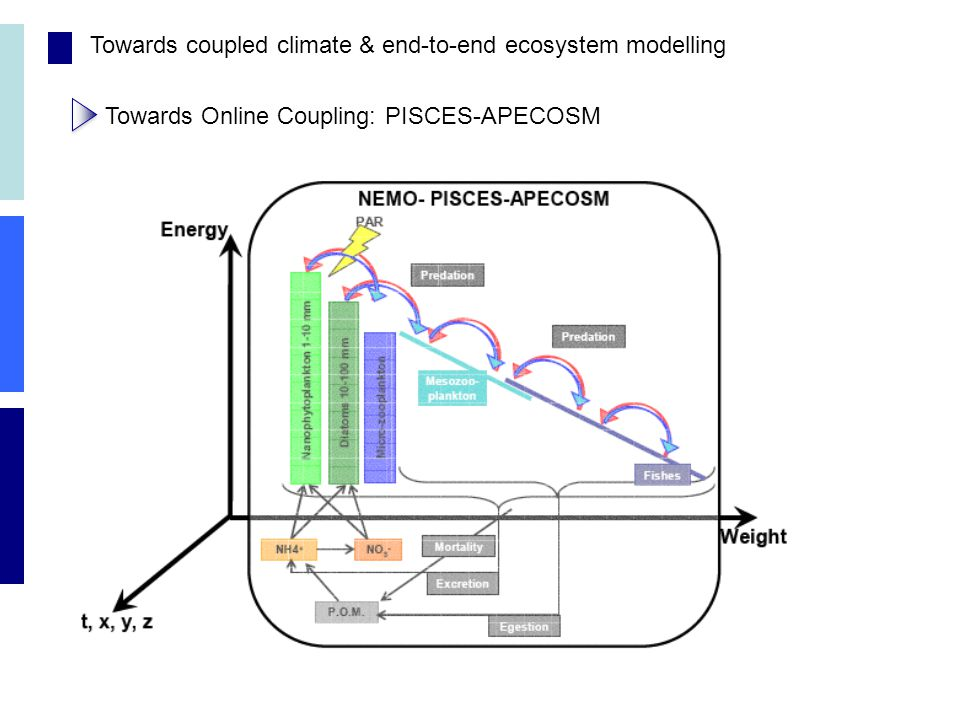 Towards coupled climate & end-to-end ecosystem modelling Towards Online Coupling: PISCES-APECOSM