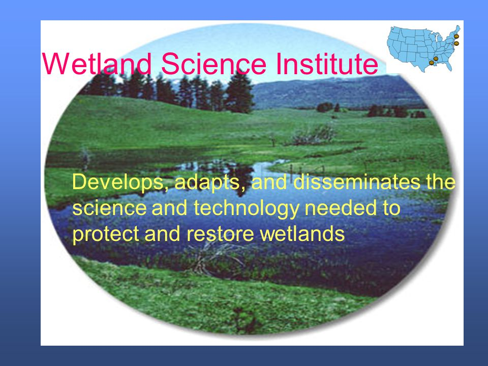 Wetland Science Institute Develops, adapts, and disseminates the science and technology needed to protect and restore wetlands