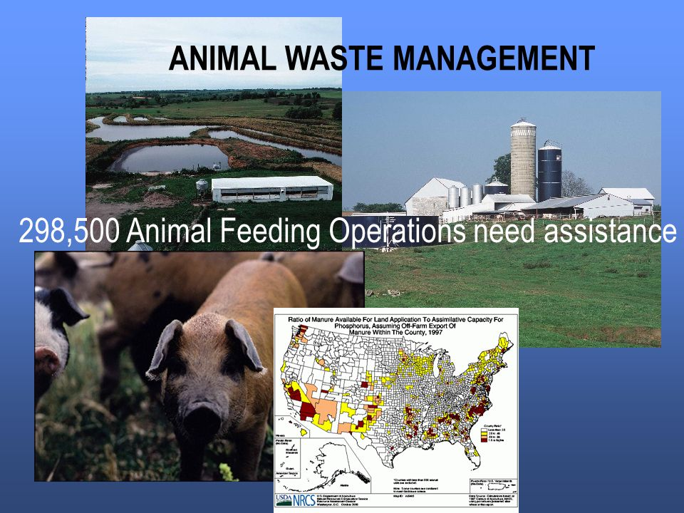 ANIMAL WASTE MANAGEMENT 298,500 Animal Feeding Operations need assistance