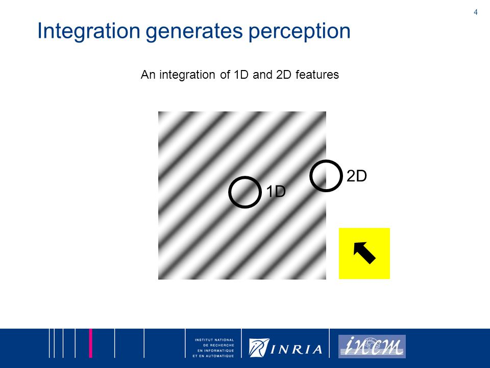 4 An integration of 1D and 2D features 2D 1D