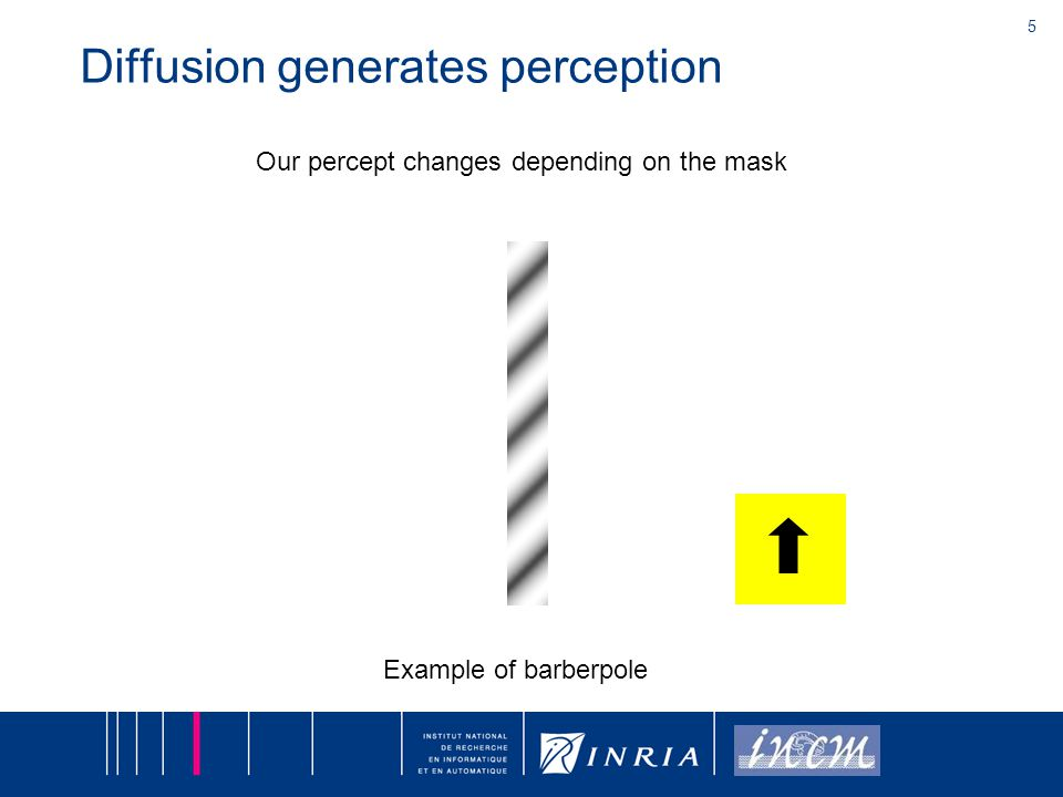 5 Diffusion generates perception Our percept changes depending on the mask Example of barberpole