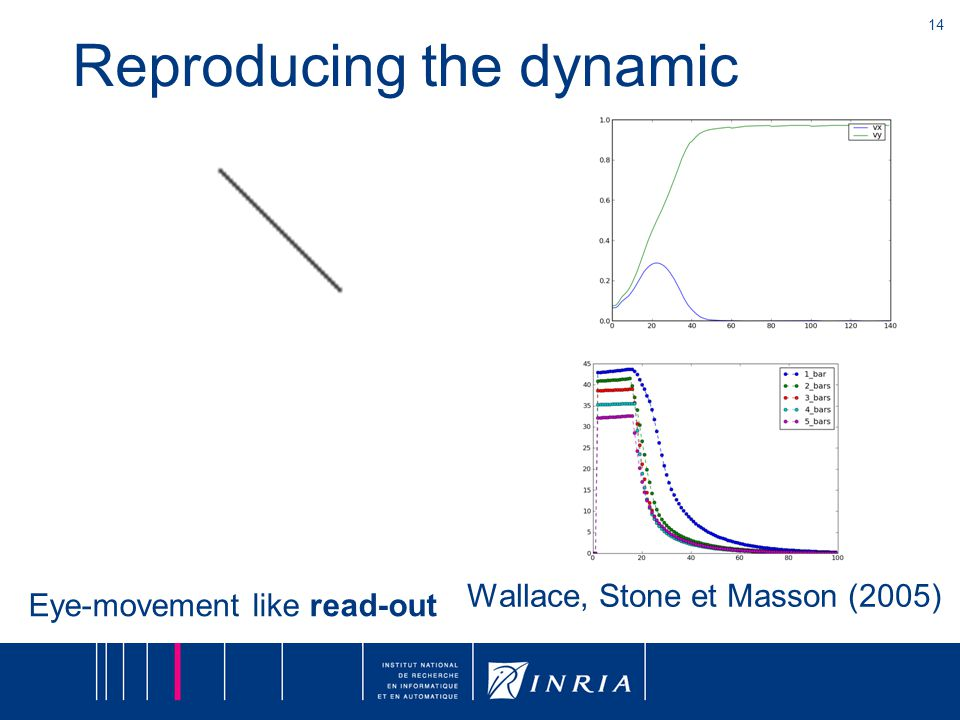 14 Wallace, Stone et Masson (2005) Reproducing the dynamic Eye-movement like read-out