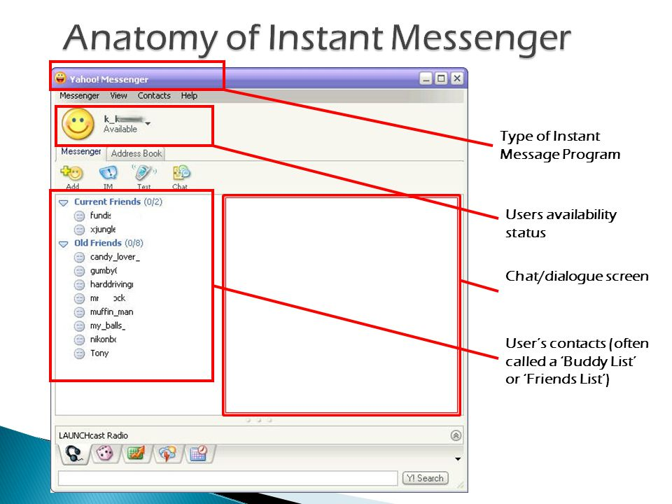 Type of Instant Message Program Users availability status Users contacts (often called a Buddy List or Friends List) Chat/dialogue screen