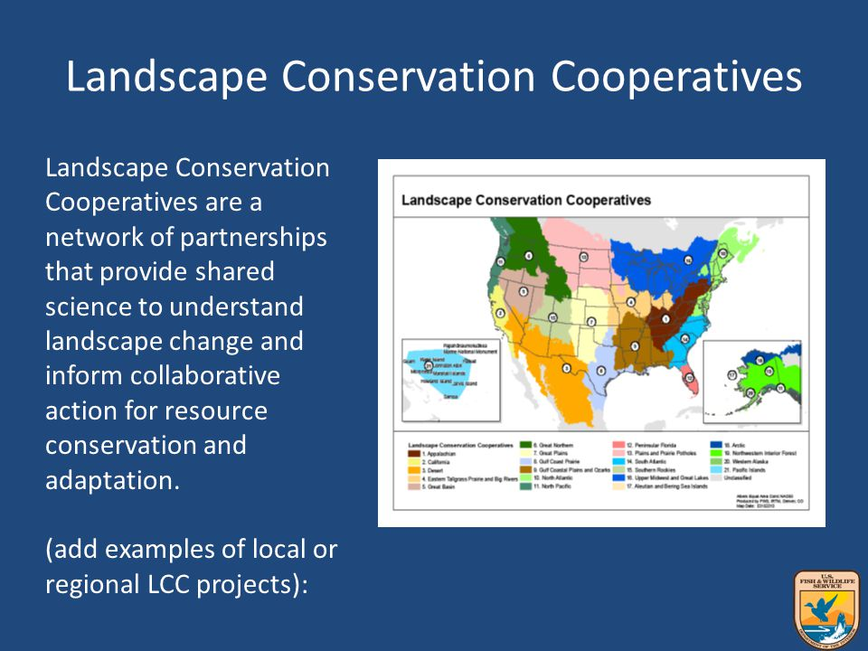 Landscape Conservation Cooperatives Landscape Conservation Cooperatives are a network of partnerships that provide shared science to understand landscape change and inform collaborative action for resource conservation and adaptation.