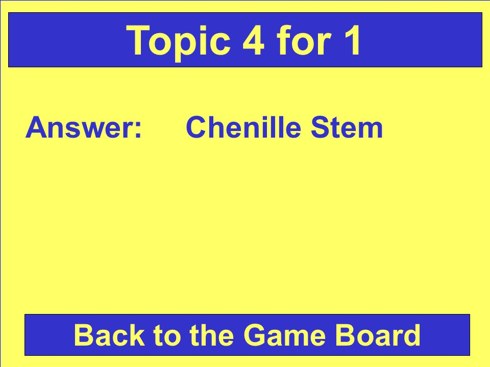 Answer: Chenille Stem Back to the Game Board Topic 4 for 1