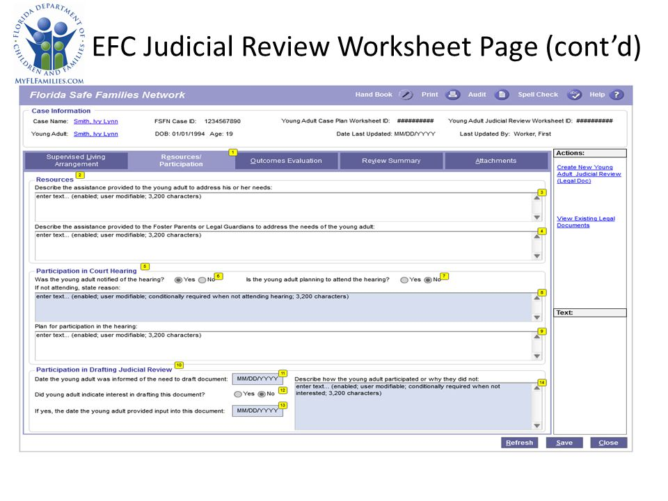 EFC Judicial Review Worksheet Page (contd)