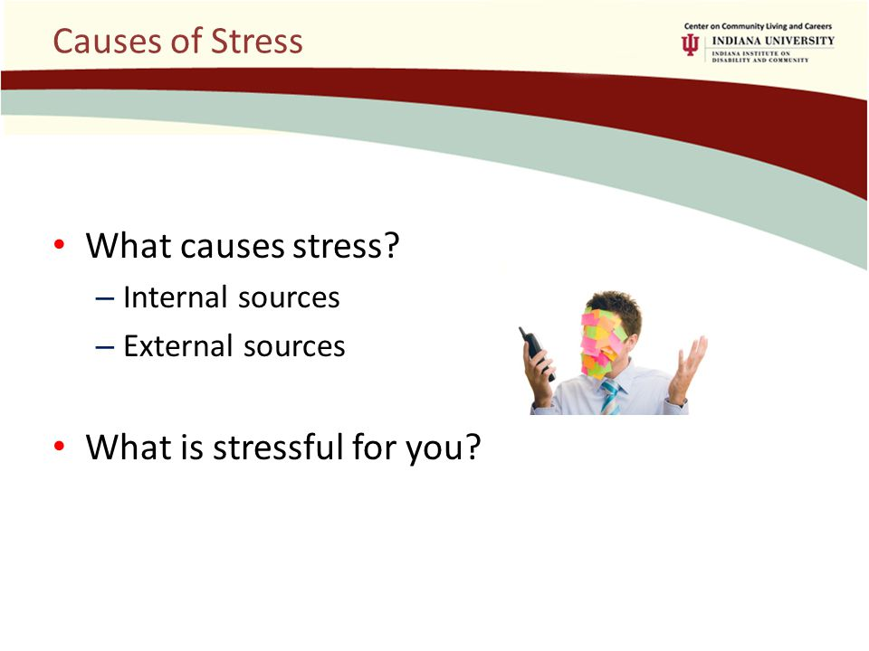 Causes of Stress What causes stress.