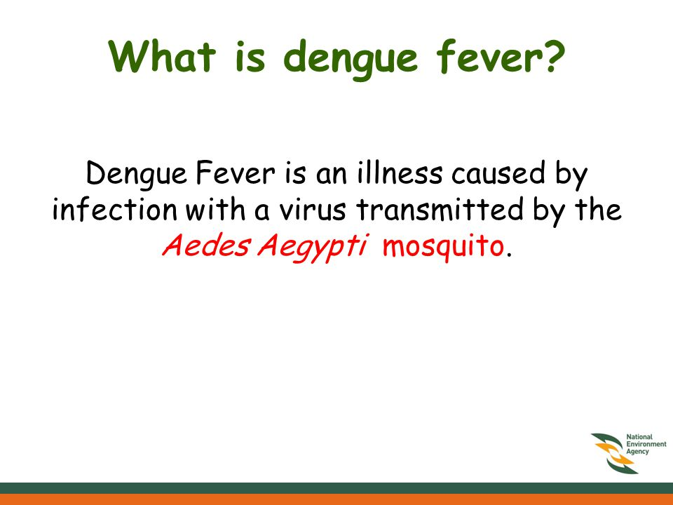 Dengue Fever What you need to know…  What is dengue fever