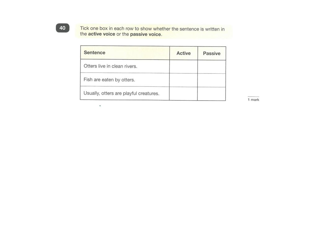 END OF KEY STAGE 2 TESTS SUMMER TERM ppt download