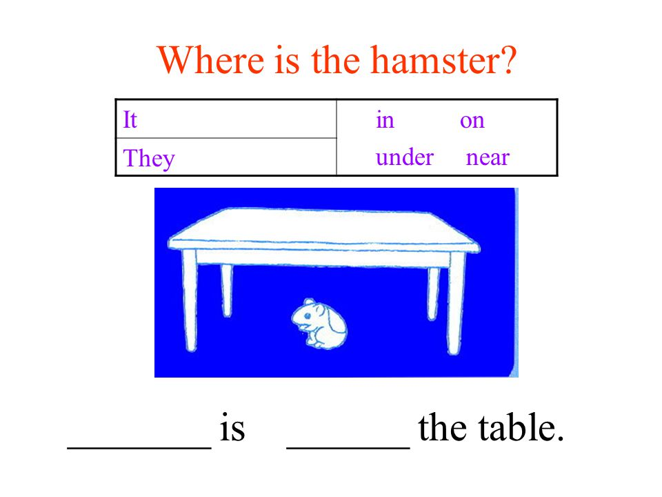 Where is the hamster It in on under near They _______ is ______ the table.