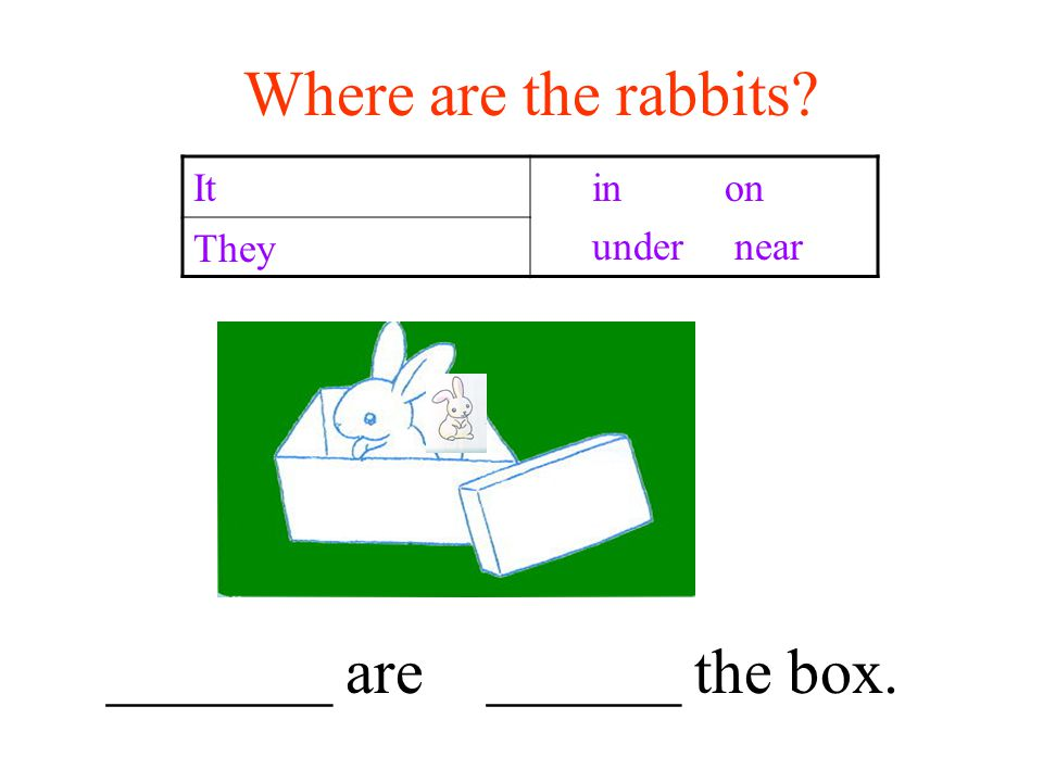 Where are the rabbits It in on under near They _______ are ______ the box.