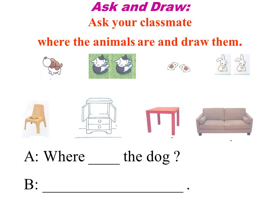 Ask and Draw: Ask your classmate where the animals are and draw them.