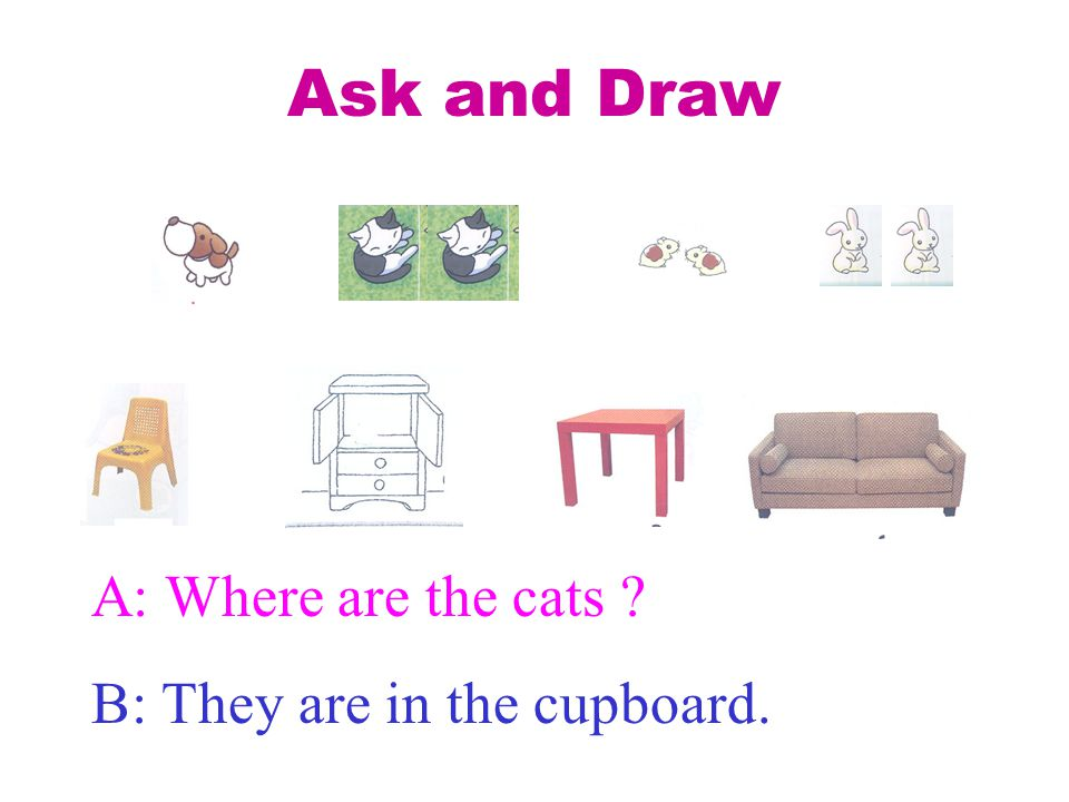 Ask and Draw A: Where are the cats B: They are in the cupboard.