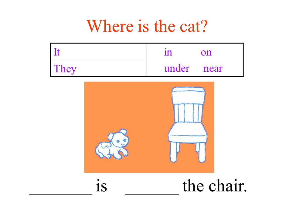Where is the cat It in on under near They _______ is ______ the chair.