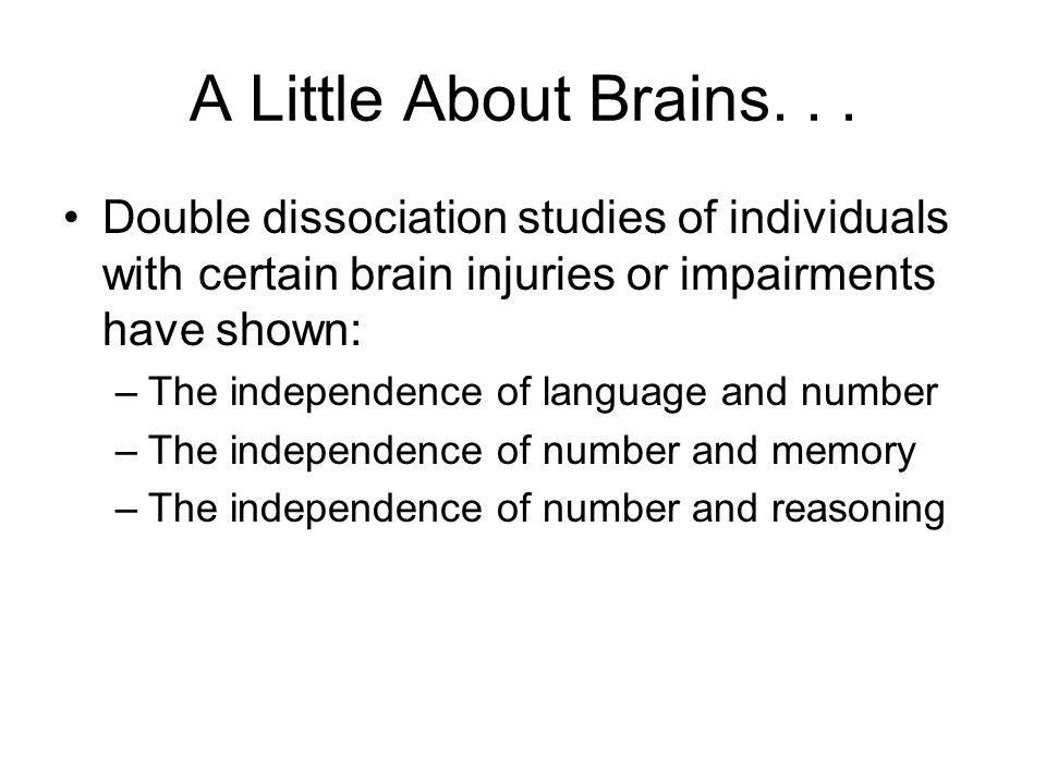 A Little About Brains...