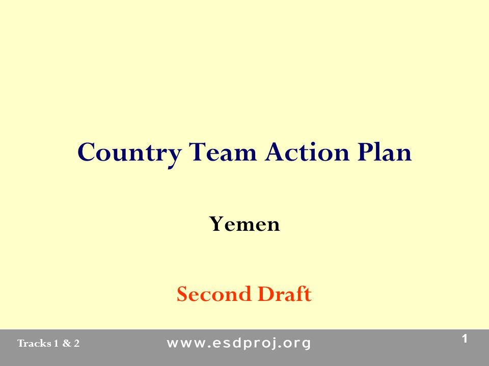 Tracks 1 & 2 1 Country Team Action Plan Yemen Second Draft
