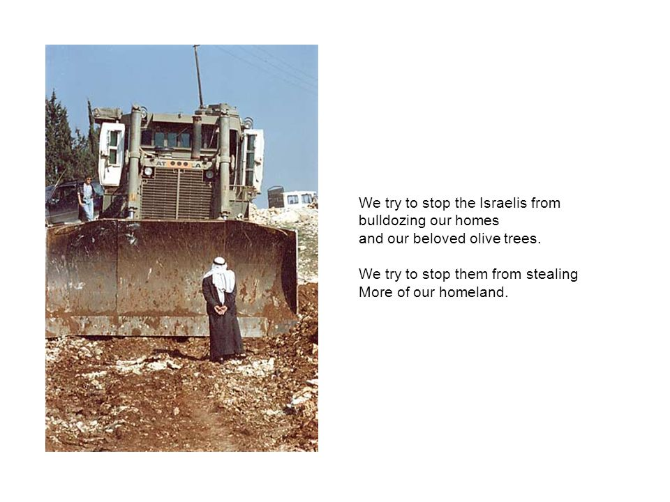 We try to stop the Israelis from bulldozing our homes and our beloved olive trees.