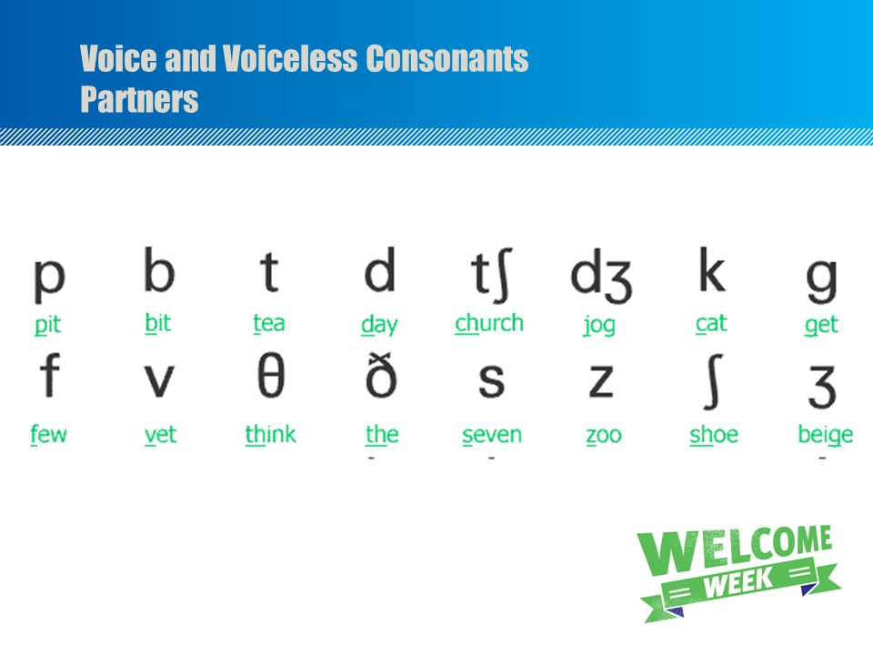Voice and Voiceless Consonants Partners