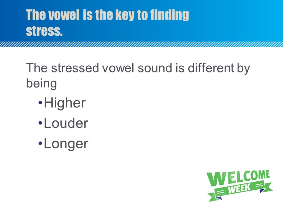 The vowel is the key to finding stress.