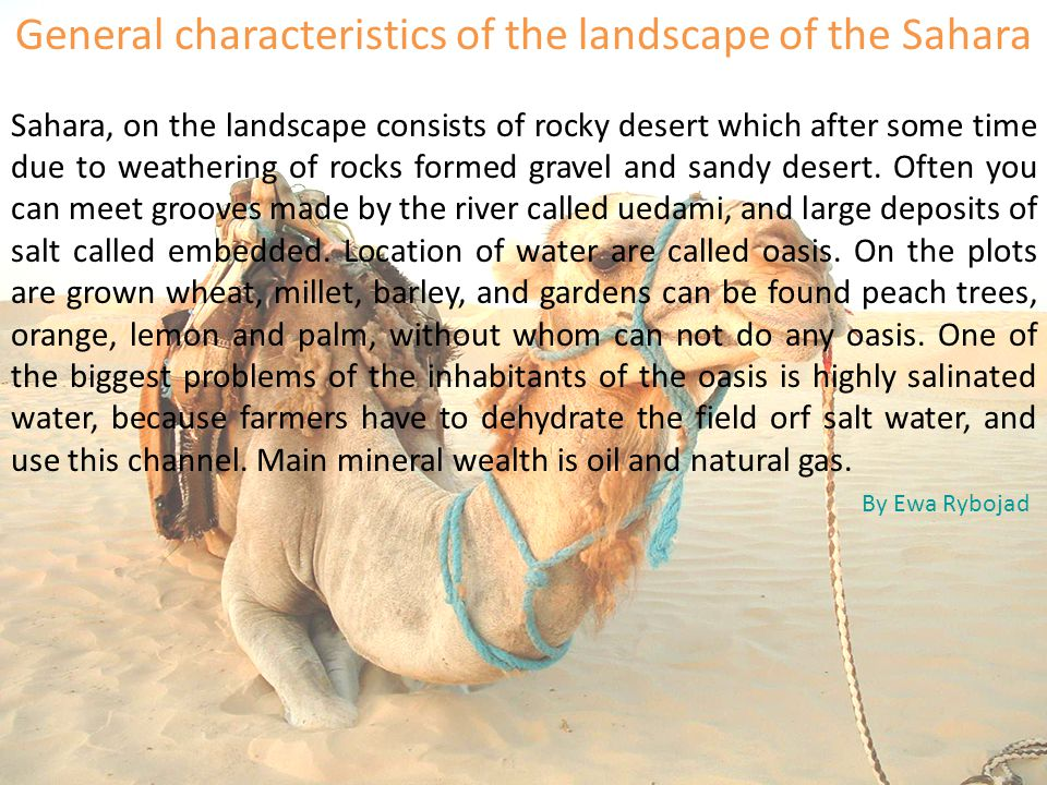General characteristics of the landscape of the Sahara Sahara, on the landscape consists of rocky desert which after some time due to weathering of rocks formed gravel and sandy desert.