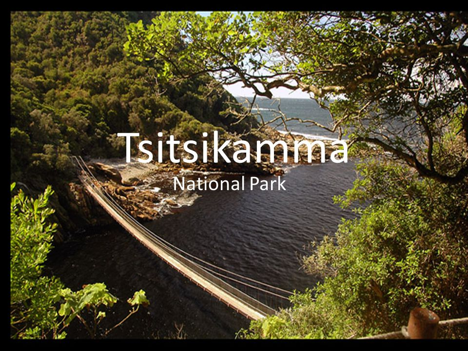 Tsitsikamma National Park