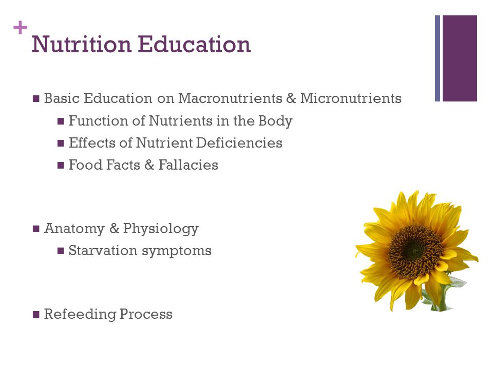 + Nutrition Education Basic Education on Macronutrients & Micronutrients Function of Nutrients in the Body Effects of Nutrient Deficiencies Food Facts & Fallacies Anatomy & Physiology Starvation symptoms Refeeding Process