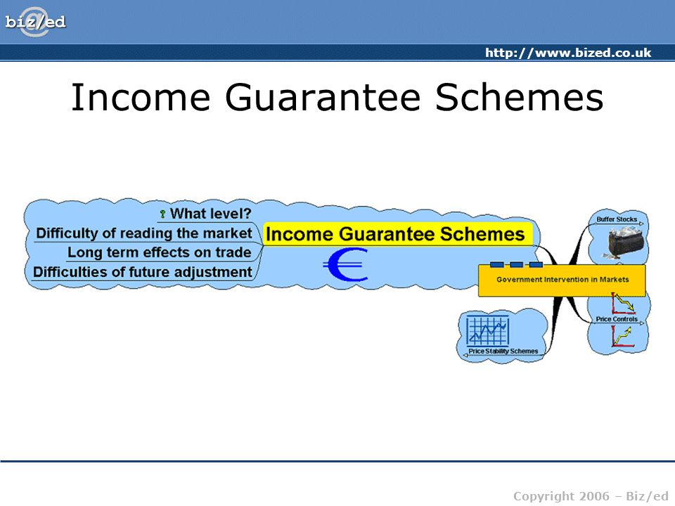 http://www.bized.co.uk Copyright 2006 – Biz/ed Income Guarantee Schemes
