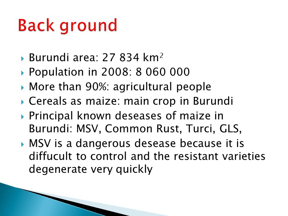  Burundi area: 27 834 km 2  Population in 2008: 8 060 000  More than 90%: agricultural people  Cereals as maize: main crop in Burundi  Principal known deseases of maize in Burundi: MSV, Common Rust, Turci, GLS,  MSV is a dangerous desease because it is diffucult to control and the resistant varieties degenerate very quickly