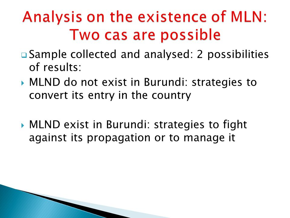  Sample collected and analysed: 2 possibilities of results:  MLND do not exist in Burundi: strategies to convert its entry in the country  MLND exist in Burundi: strategies to fight against its propagation or to manage it