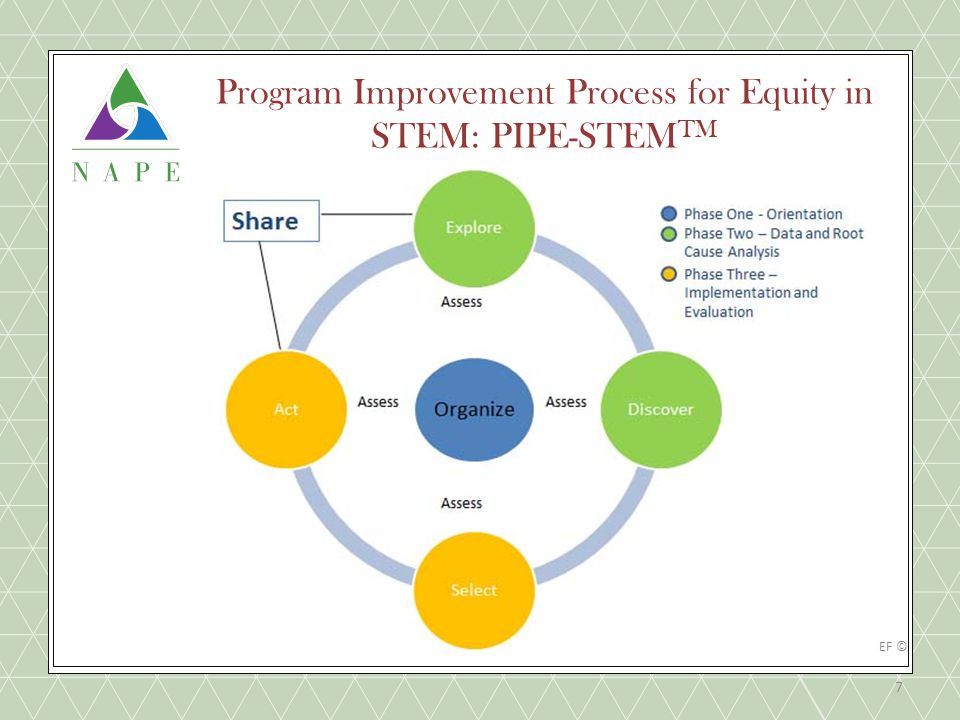 Program Improvement Process for Equity in STEM: PIPE-STEM TM 7 NAPEEF ©