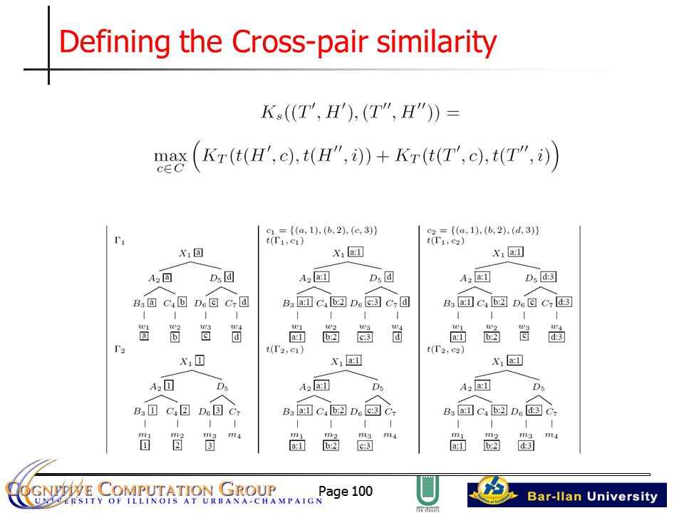 Page 100 Defining the Cross-pair similarity
