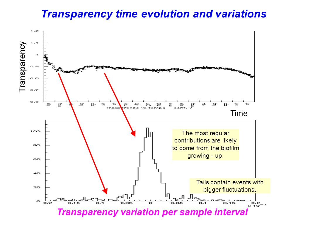 Transparency time evolution and variations Transparency The most regular contributions are likely to come from the biofilm growing - up.