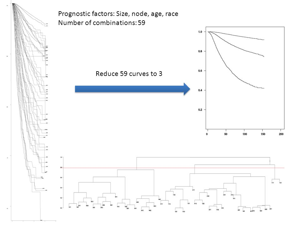 Prognostic factors: Size, node, age, race Number of combinations: 59 Reduce 59 curves to 3