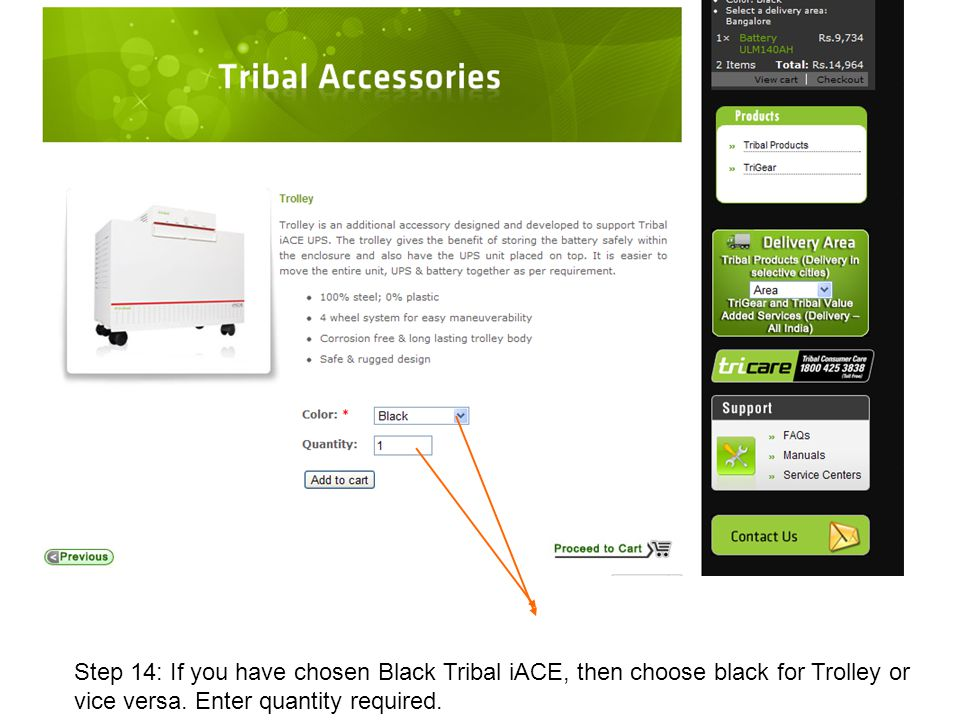 Step 14: If you have chosen Black Tribal iACE, then choose black for Trolley or vice versa.