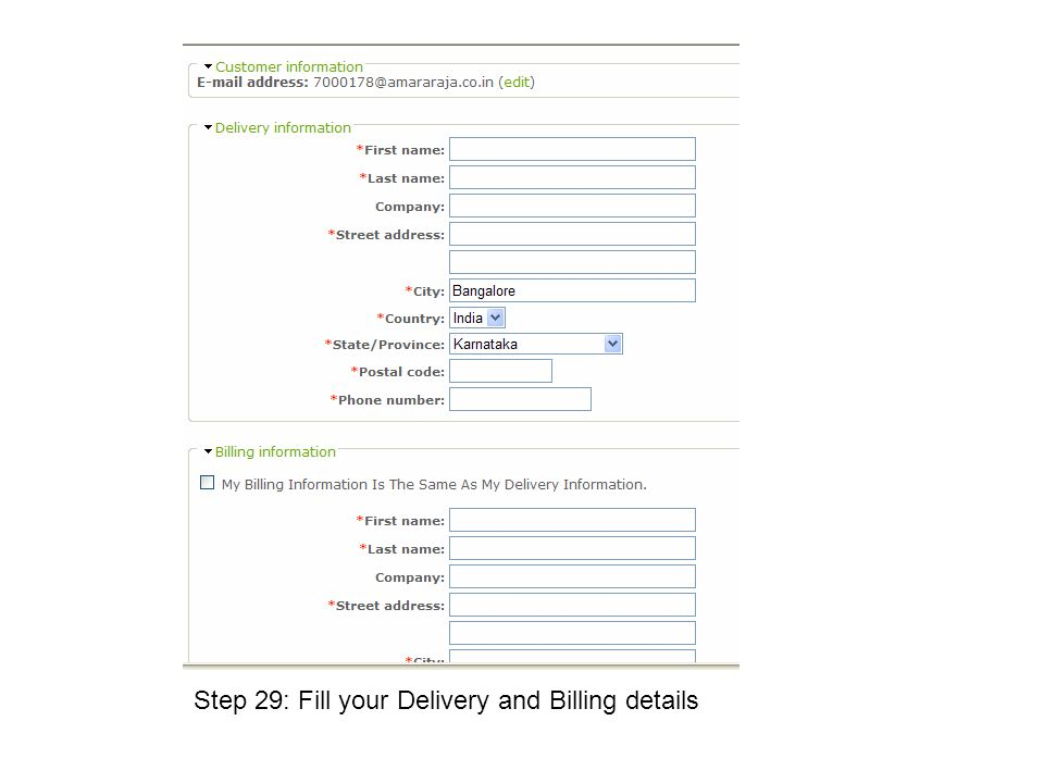 Step 29: Fill your Delivery and Billing details