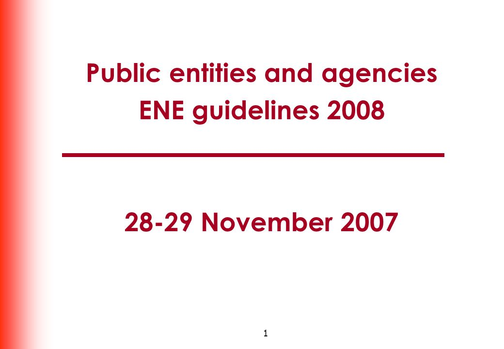 1 Public entities and agencies ENE guidelines 2008 28-29 November 2007