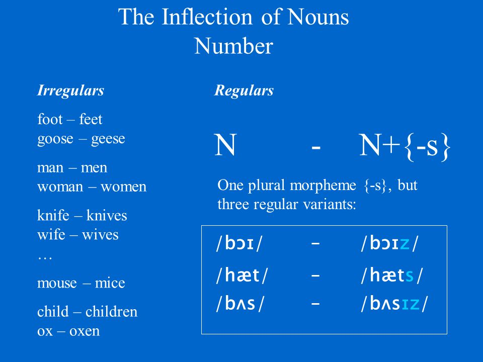 Inflectional morphology, overview Nouns:{-Ø | -s} the category of Number the category of Case the category of Tense{{-Ø | -s} | -ed} {-Ø | be + -en}the category of Voice Verbs:{-Ø | -s}the category of Number the category of Person {-Ø | have + -en} {-Ø | be + -ing} the category of Aspect Adjectives:{-Ø | -er | -est}the category of Comparison