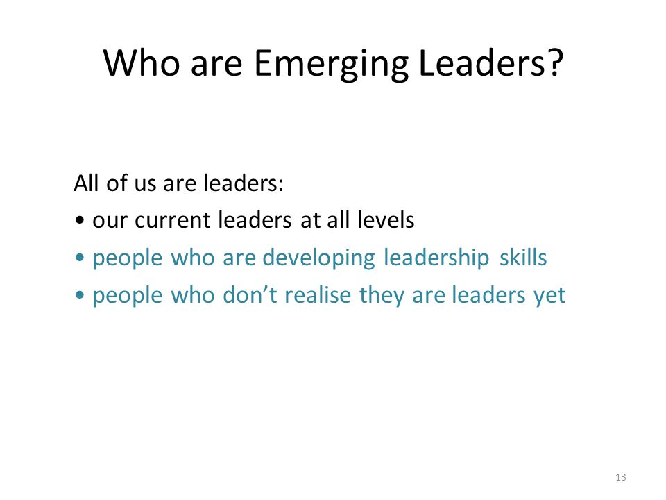 Who are Emerging Leaders.