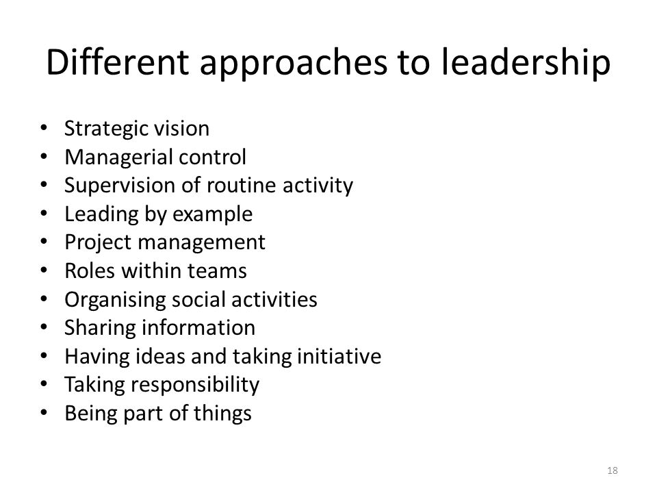 Different approaches to leadership Strategic vision Managerial control Supervision of routine activity Leading by example Project management Roles within teams Organising social activities Sharing information Having ideas and taking initiative Taking responsibility Being part of things 18