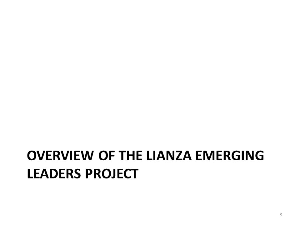 OVERVIEW OF THE LIANZA EMERGING LEADERS PROJECT 3