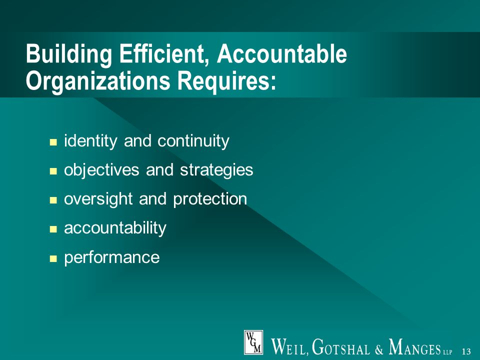 13 Building Efficient, Accountable Organizations Requires: identity and continuity objectives and strategies oversight and protection accountability performance