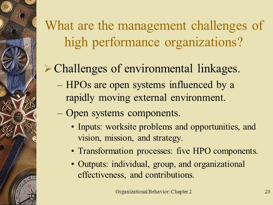 Organizational Behavior: Chapter 220 What are the management challenges of high performance organizations.