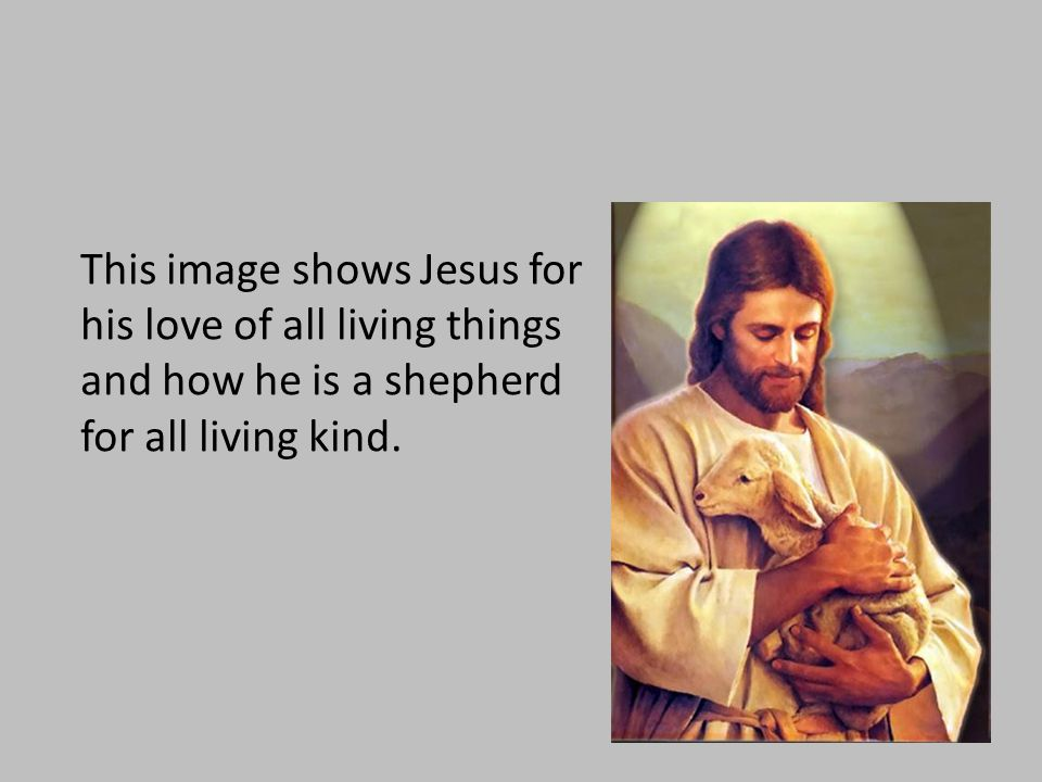 This image shows Jesus for his love of all living things and how he is a shepherd for all living kind.