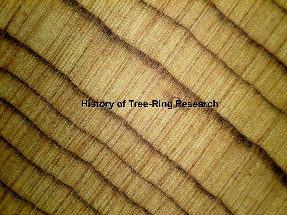 History of Tree-Ring Research