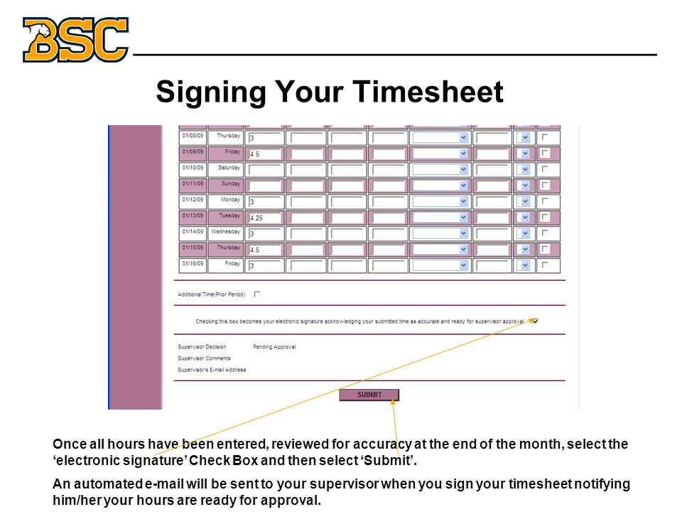 Signing Your Timesheet Once all hours have been entered, reviewed for accuracy at the end of the month, select the 'electronic signature' Check Box and then select 'Submit'.