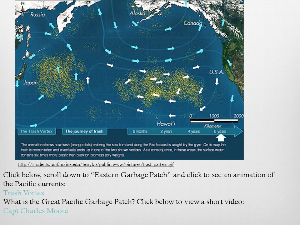 http://students.umf.maine.edu/learykp/public.www/pictures/trash-pattern.gif Click below, scroll down to Eastern Garbage Patch and click to see an animation of the Pacific currents: Trash Vortex What is the Great Pacific Garbage Patch.