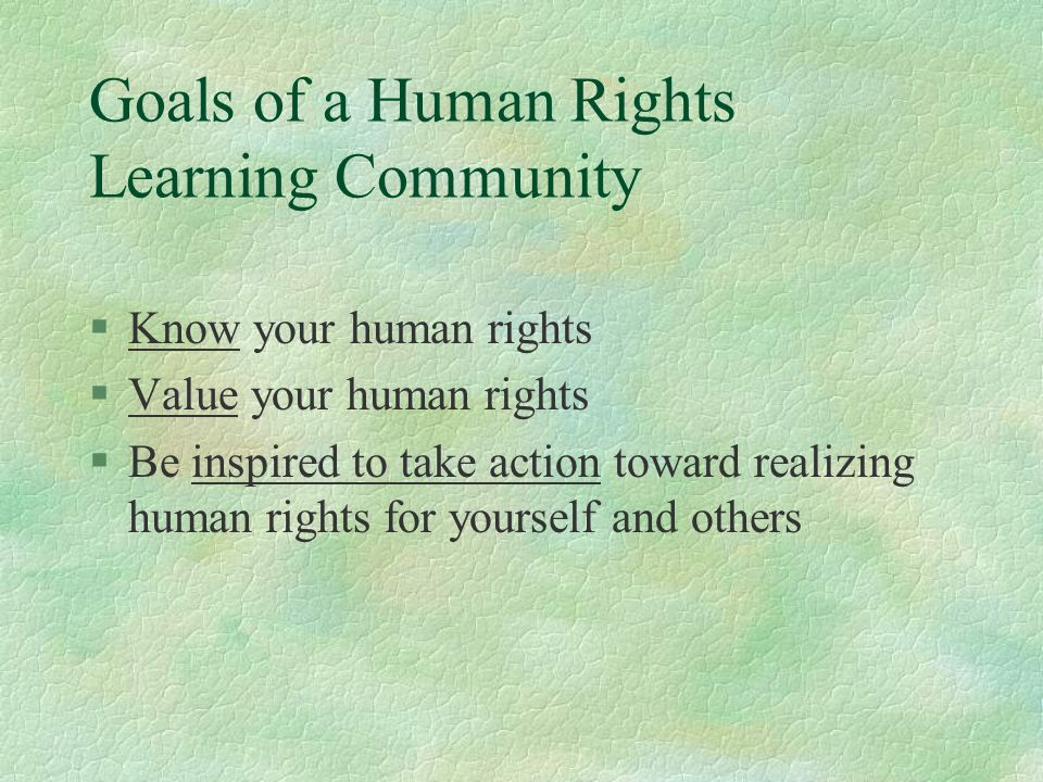 Goals of a Human Rights Learning Community §Know your human rights §Value your human rights §Be inspired to take action toward realizing human rights for yourself and others