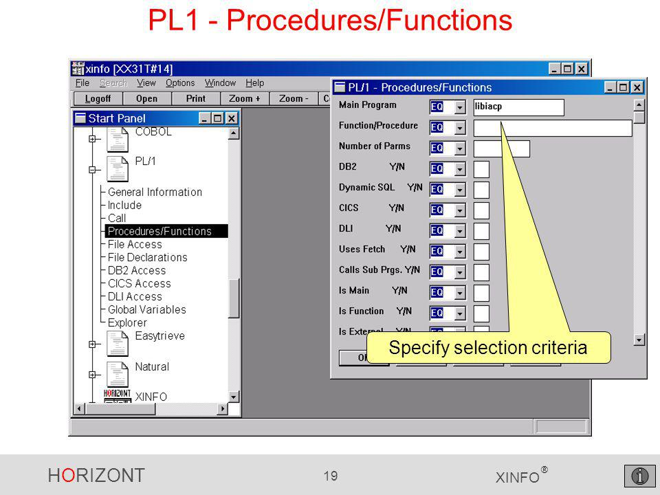 HORIZONT 19 XINFO ® PL1 - Procedures/Functions Specify selection criteria