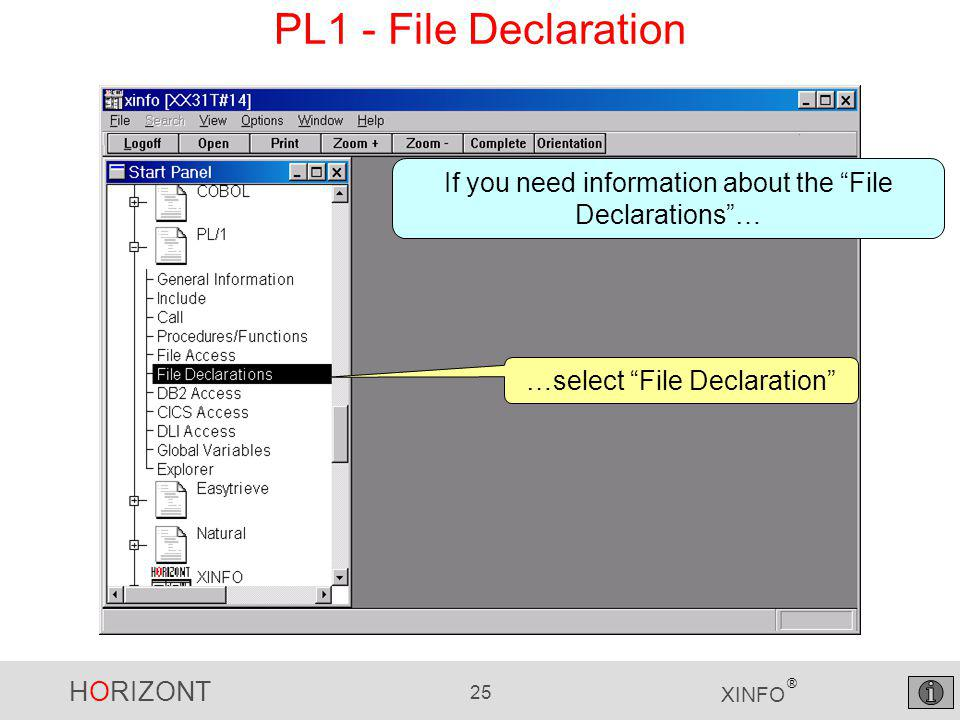 HORIZONT 25 XINFO ® PL1 - File Declaration …select File Declaration If you need information about the File Declarations …